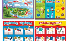 Educational Posters 2010-2011